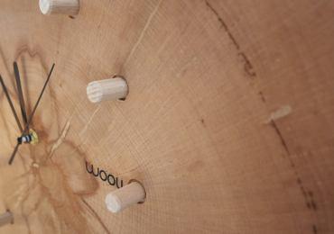 01 kloki z lesa